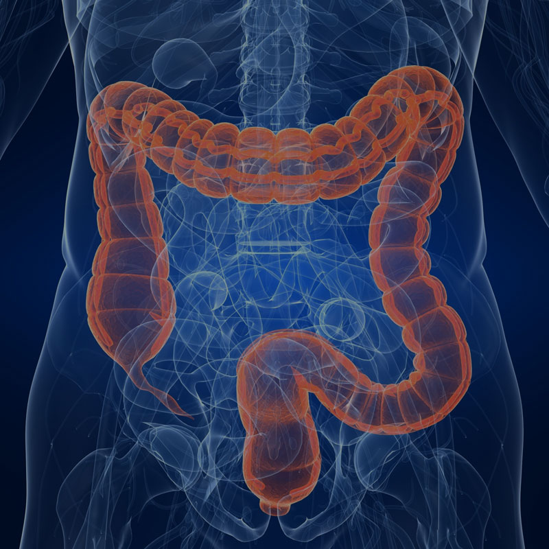 Home Page - American College of Gastroenterology